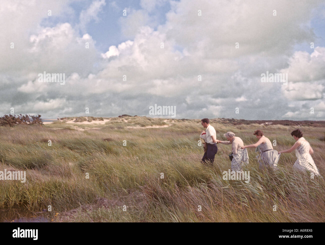 'Man and three women walking 'single file' across grassy marsh,^1960, Sandbanks, Poole, Dorset' - Stock Image