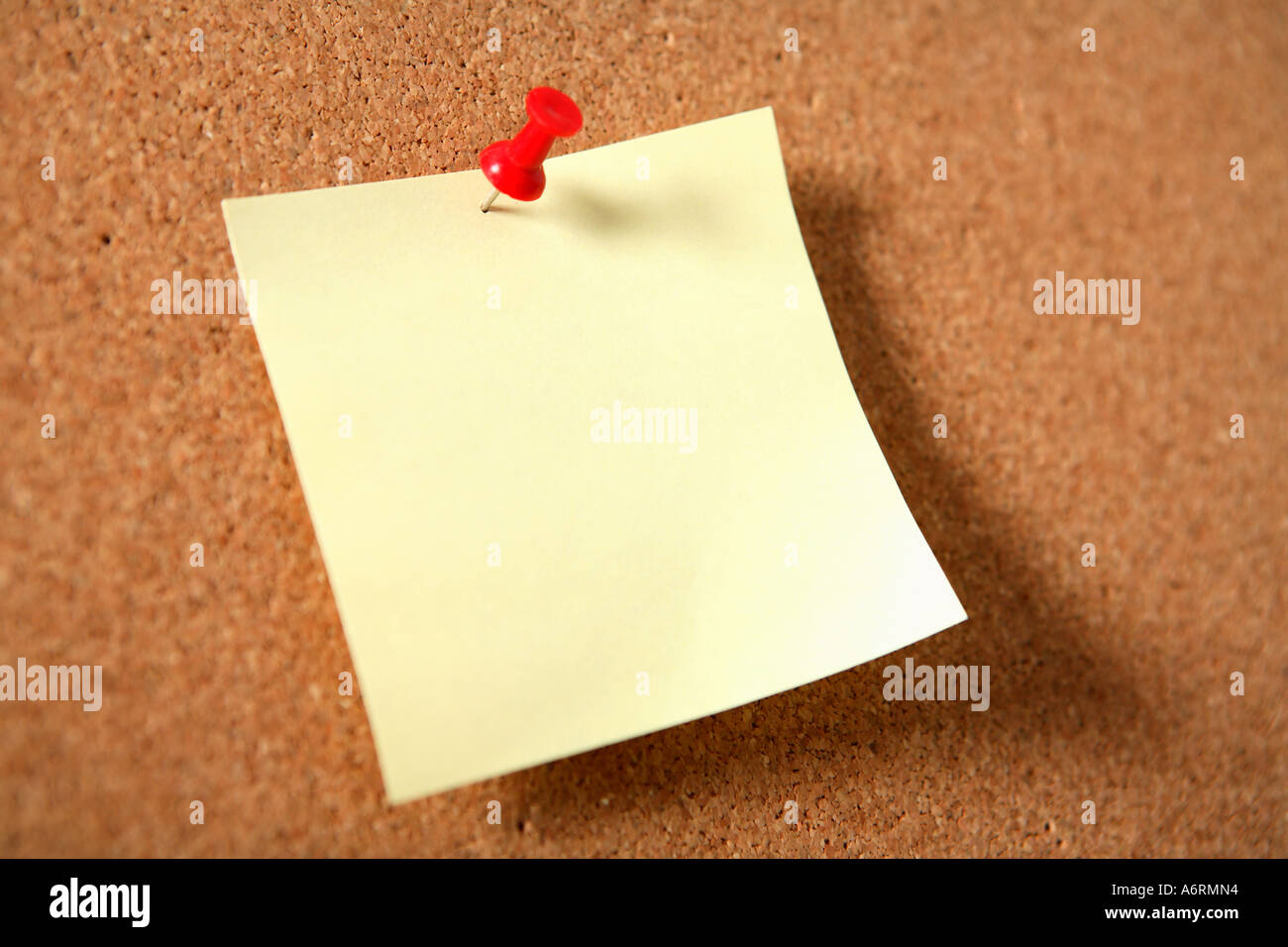 Blank reminder note pinned to cork board. - Stock Image