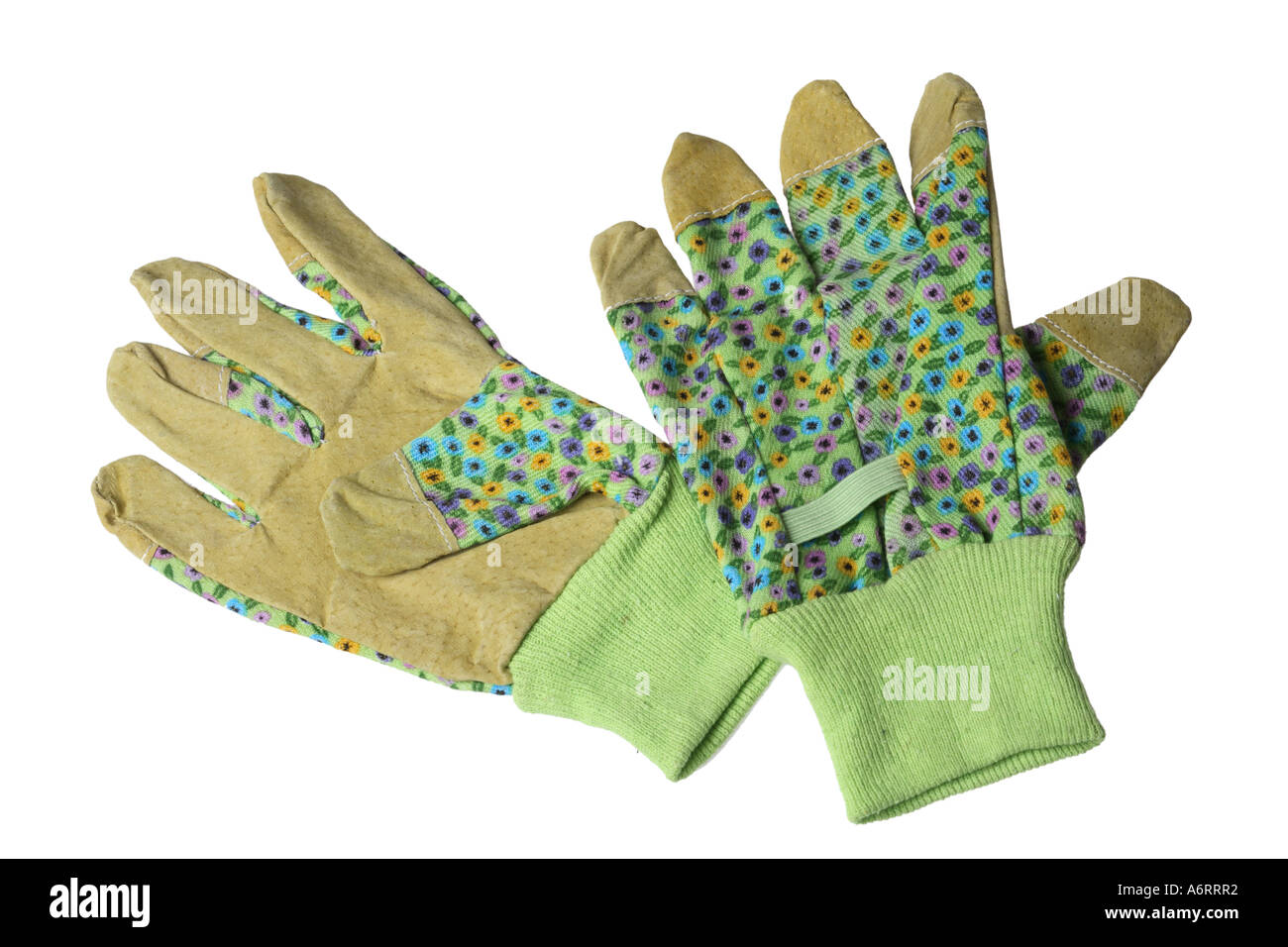 Gardening Gloves - Stock Image