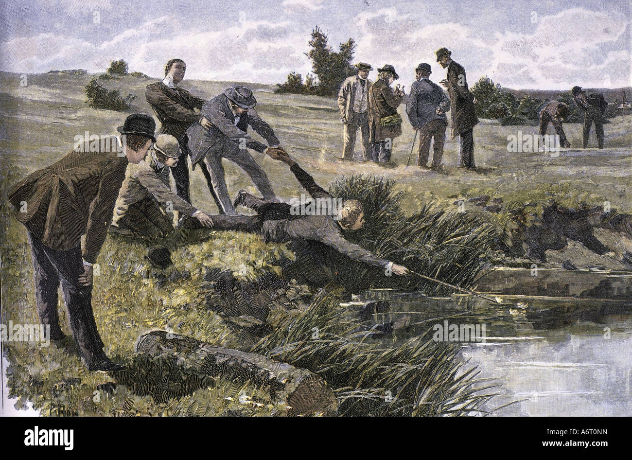 events, science, botany, 'A rare swamp plant', engraving after drawing by P. Hey, Germany, 19th century, - Stock Image