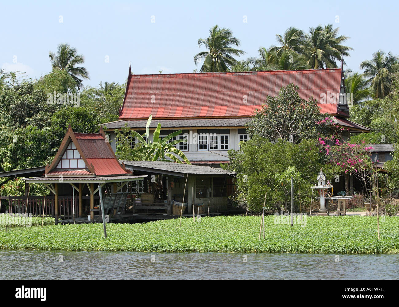 Wooden Thai specific tenement on the shore of the river Maenam Chao Phraya in Bangkok, Thailand, Asia - Stock Image