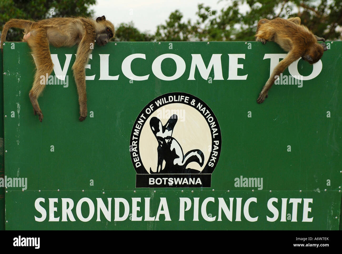 Welcome to Serondela Picknick Site, Chobe River, Botswana Stock Photo