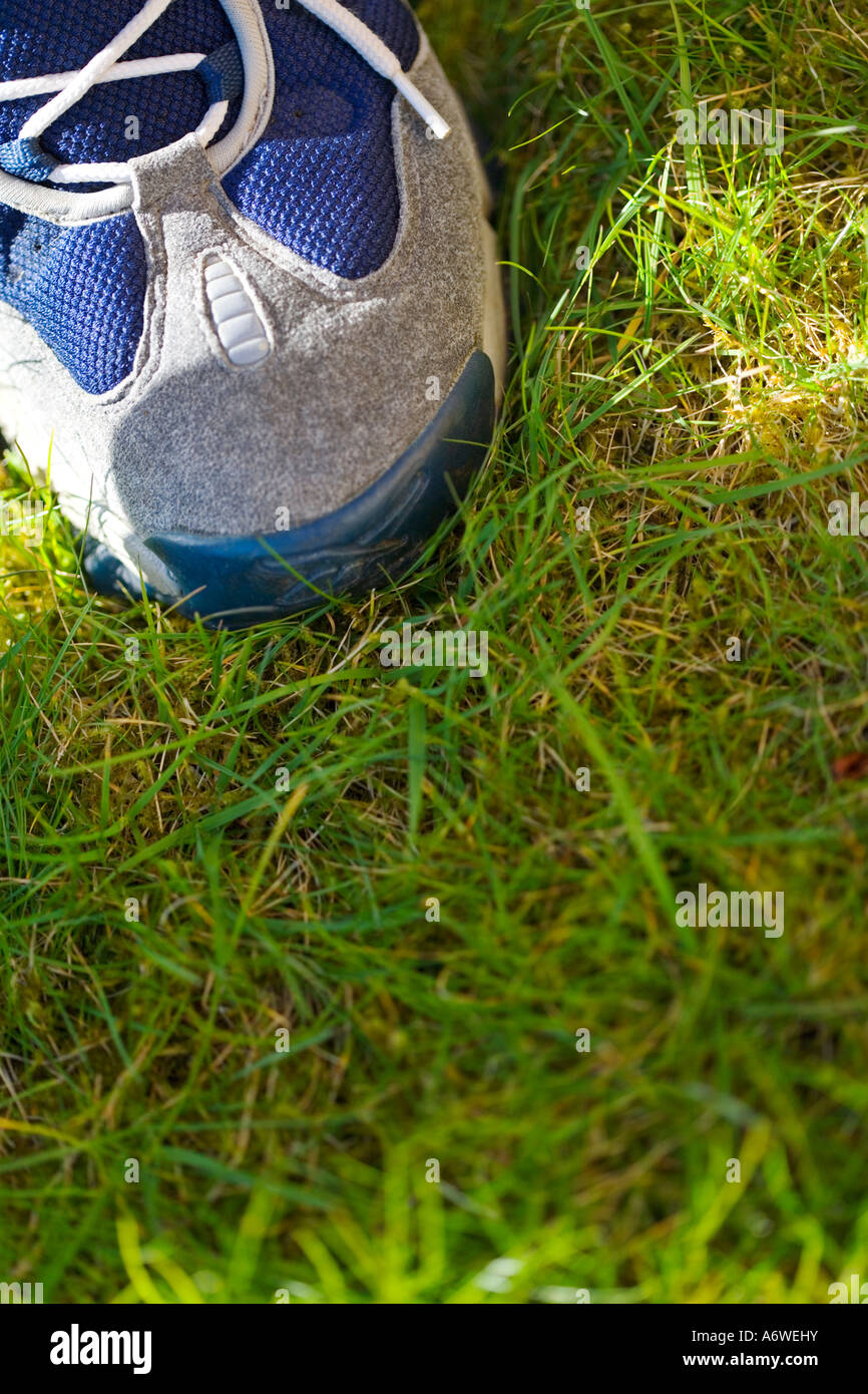 TRAINER ON GRASS - Stock Image