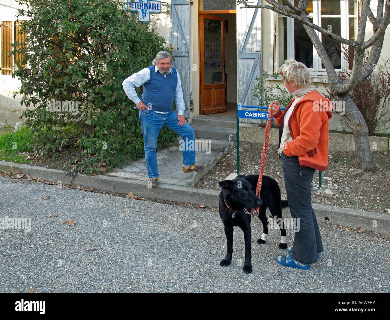 MR PR woman with a dog standing in front of small animal veterinary practice speaking with the veterinarian - Stock Image