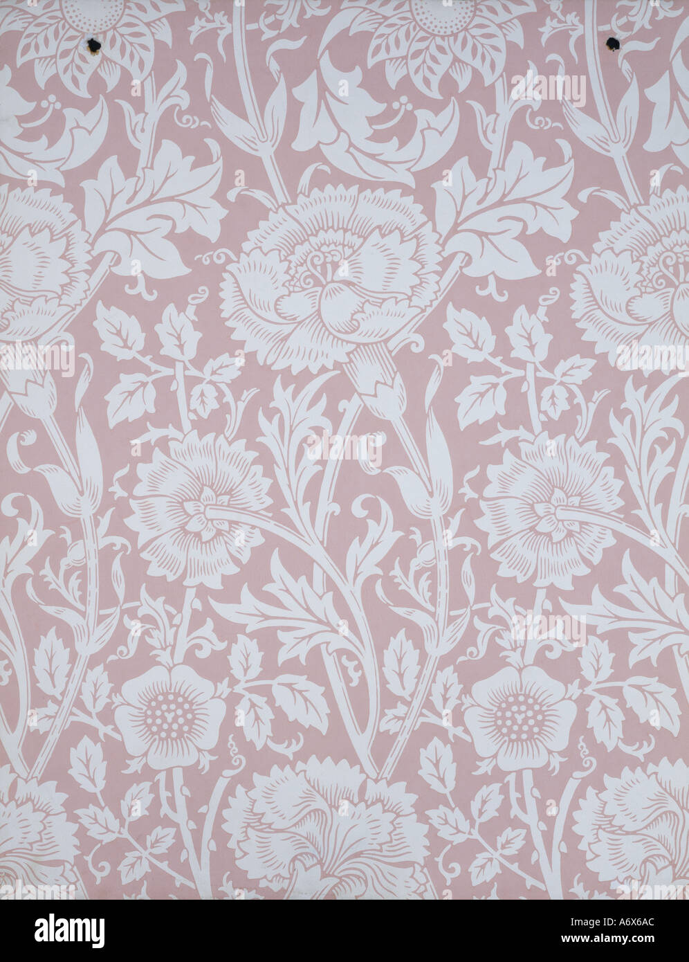 Pink and Rose wallpaper by William Morris. England, late 19th century. - Stock Image