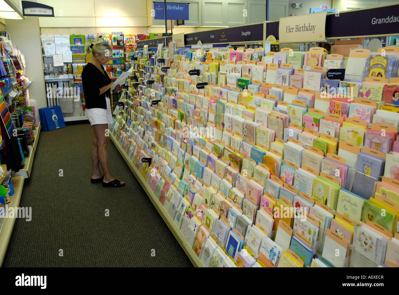 Greeting Card Display Inside A Retail Store Stock Photo 11664502