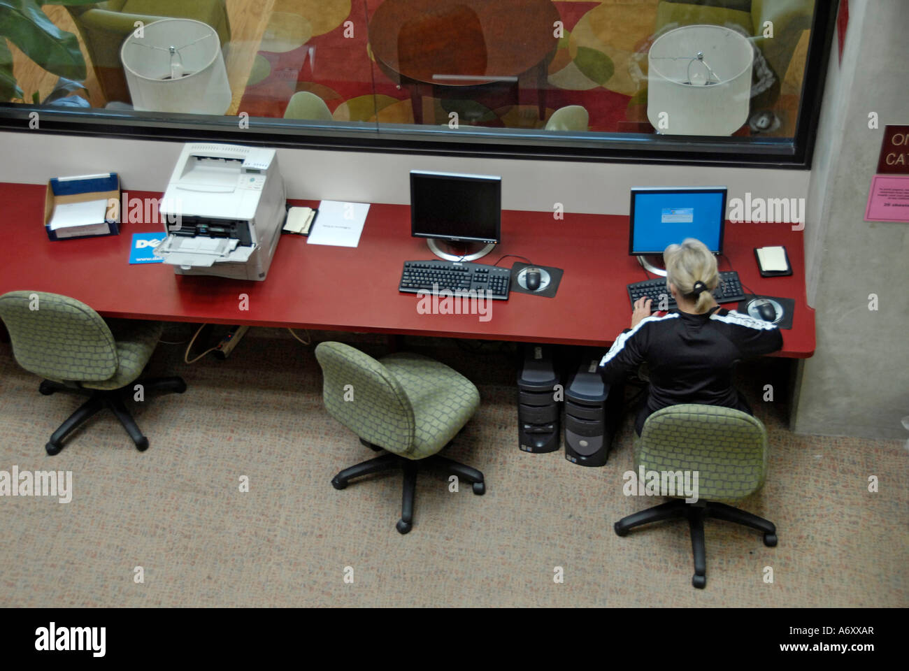 Adult Learner at Florida Southern College Library at Lakeland Central Florida United States - Stock Image