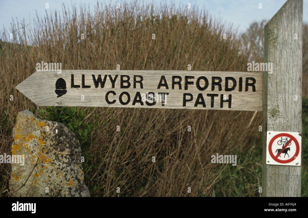 llwybr arfordir coast path Pembrokeshire Sir Benfro is a county in the southwest of Wales in the United Kingdom. - Stock Image