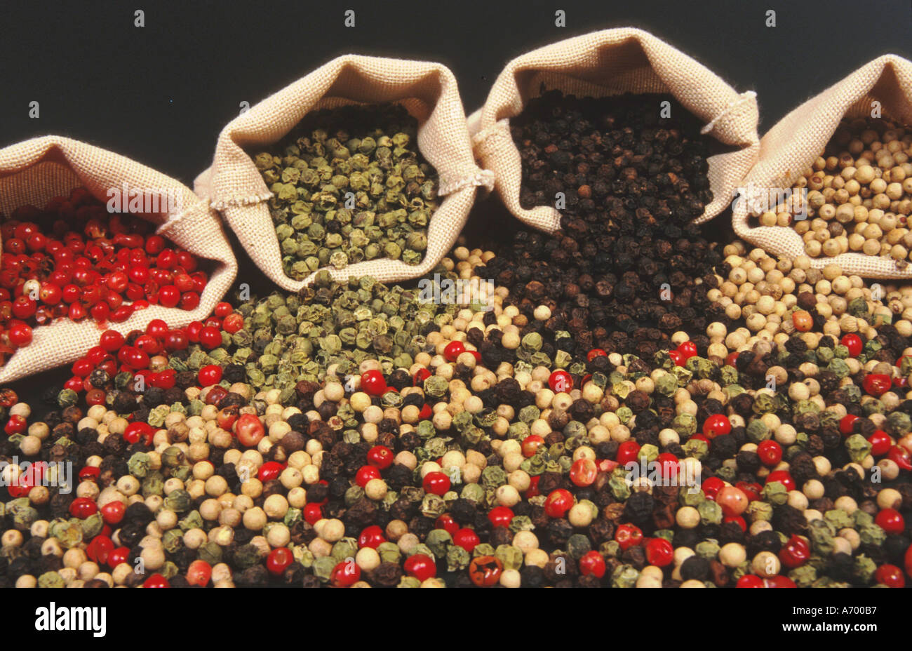 pepper corns red black white green mixed - Stock Image