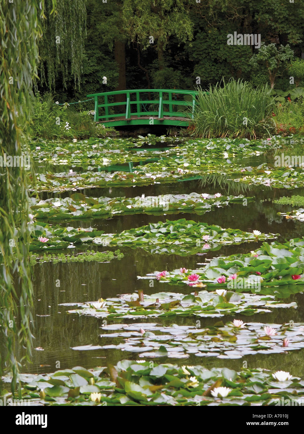 Japanese Bridge And Lily Pond In The Garden Of The Impressionist Painter  Claude Monet Giverny Eure Normandy France Europe