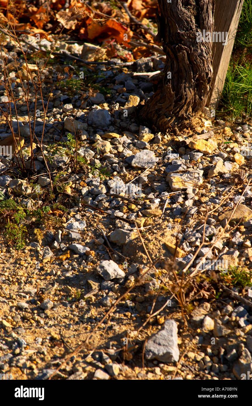 La Clape. Languedoc. Terroir soil. Vineyard. France. Europe. Schist slate soil. - Stock Image