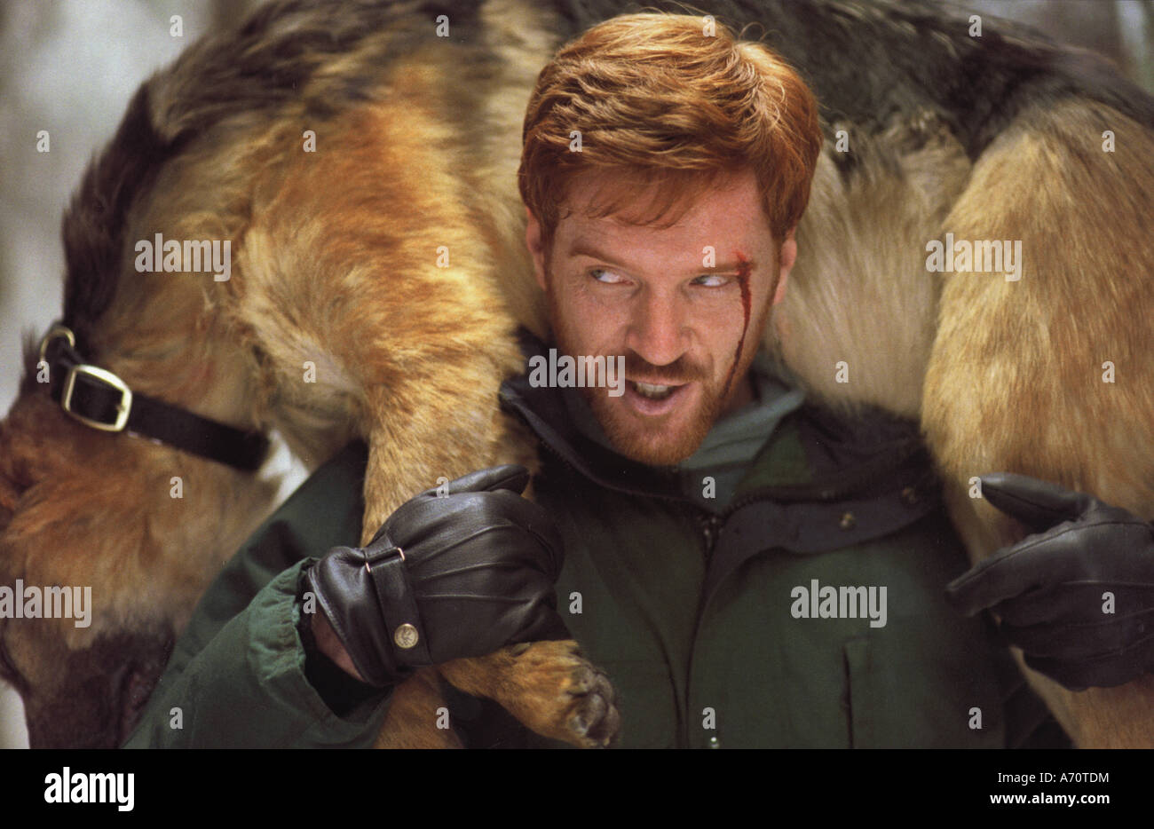 DREAMCATCHER 2003 Warner/Castle Rock film with Damian Lewis - Stock Image