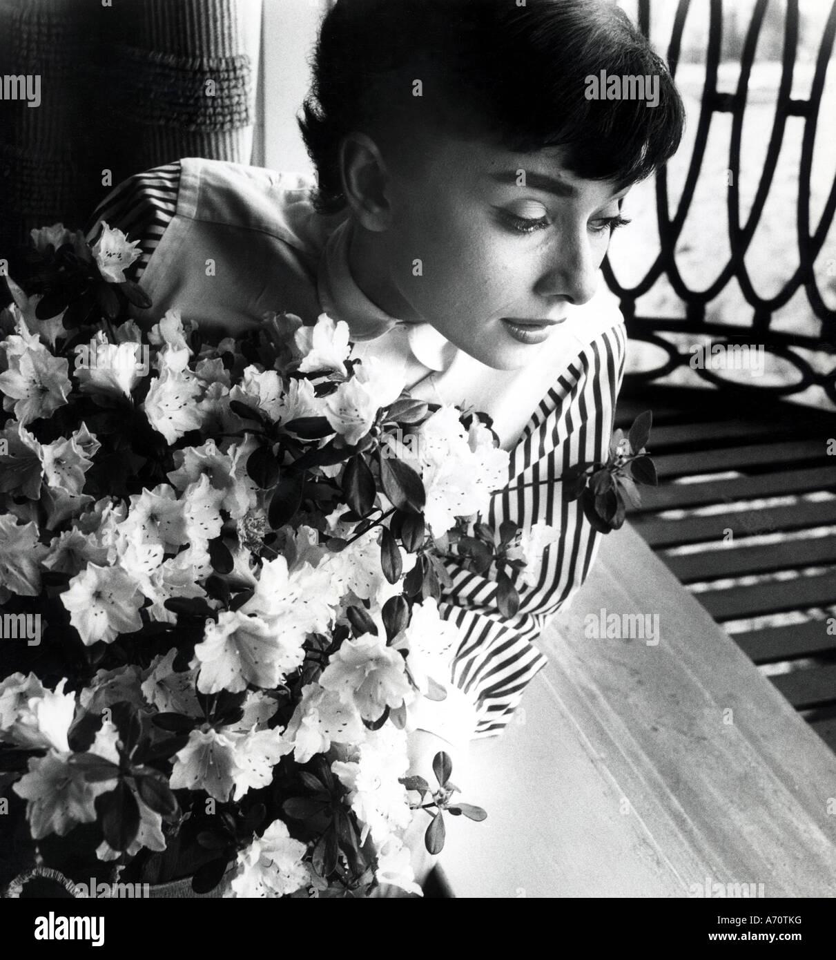 AUDREY HEPBURN - film actress about 1955 - Stock Image