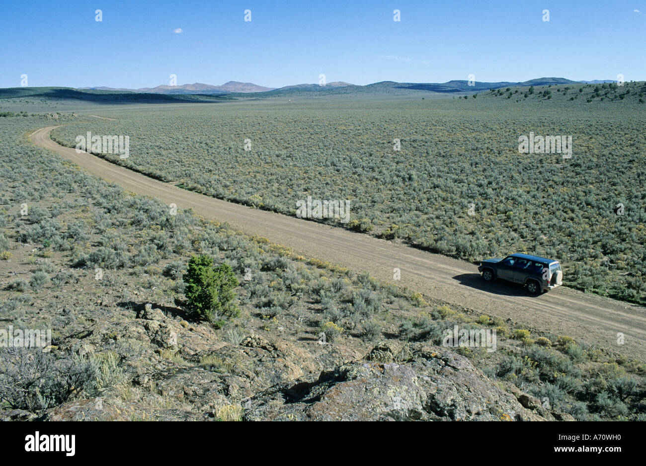 Vehicle on dirt road, historic California Trail, Goose Creek Valley, Nevada, USA - Stock Image