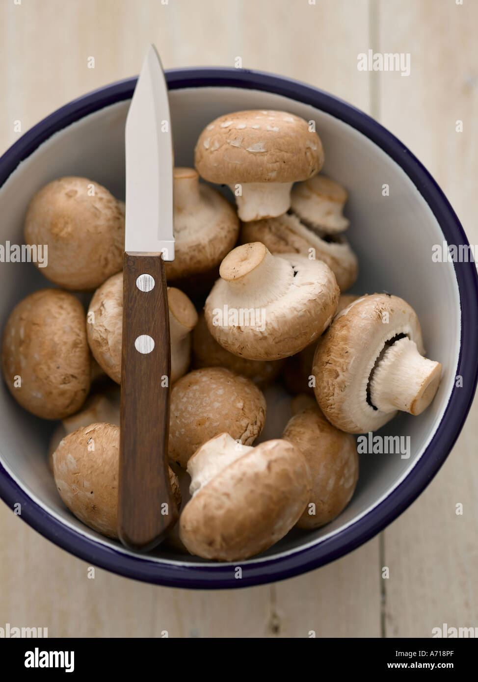 Chestnut mushrooms in enamel bowl with knife - high end Hasselblad 61mb digital image - Stock Image