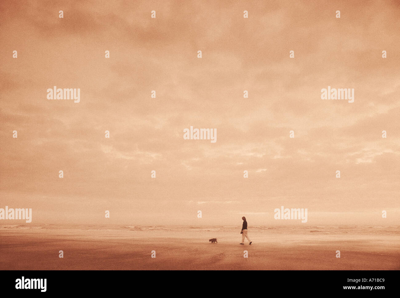 Woman walking along beach with pet dog on leash model released image - Stock Image