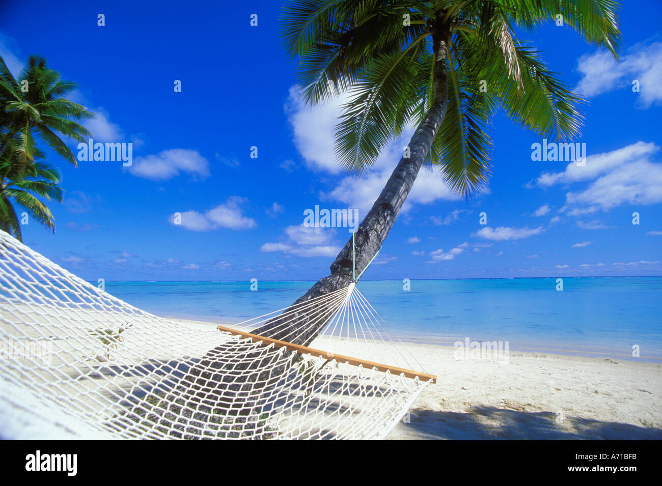 Hammock and coconut palm tree Aitutaki Cook Islands South Pacific Ocean - Stock Image