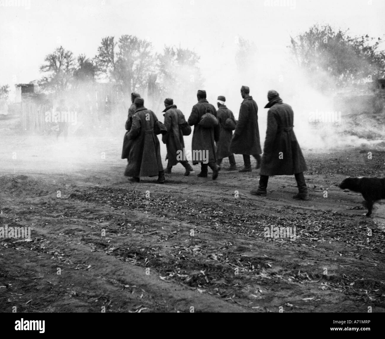 events, Second World War / WWII, prisoners of war, Russia, captured Soviet soldiers, 1941, Additional-Rights-Clearances - Stock Image