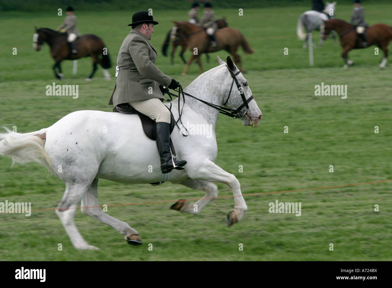 A middle aged rider on his white horse competes in the South Oxfordshire Riding Club's Open Show - Stock Image