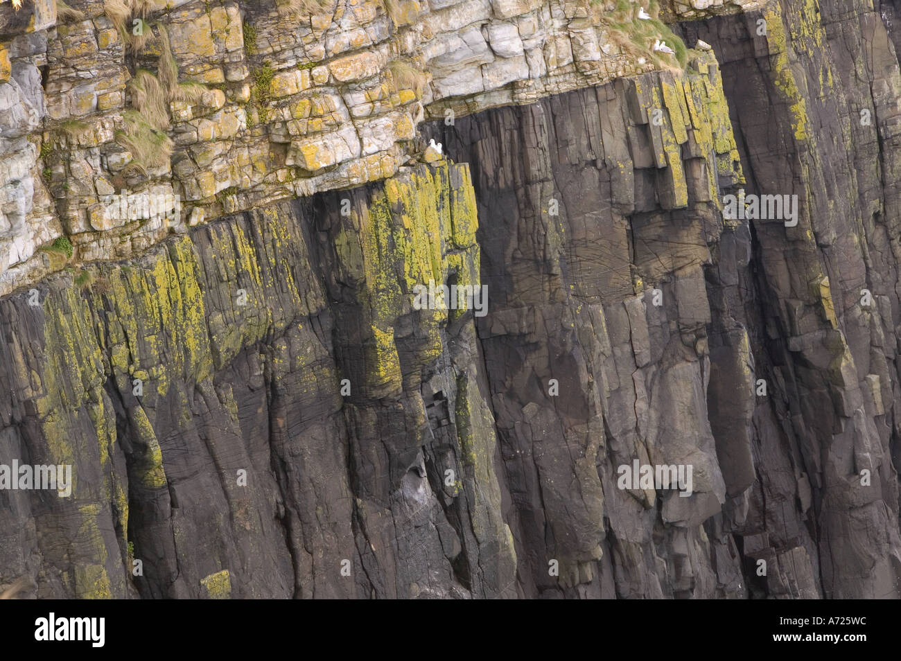 an geological unconformity in a sea cliff on the Trotternsih Peninsular, Isle of Skye, Scotland, UK - Stock Image