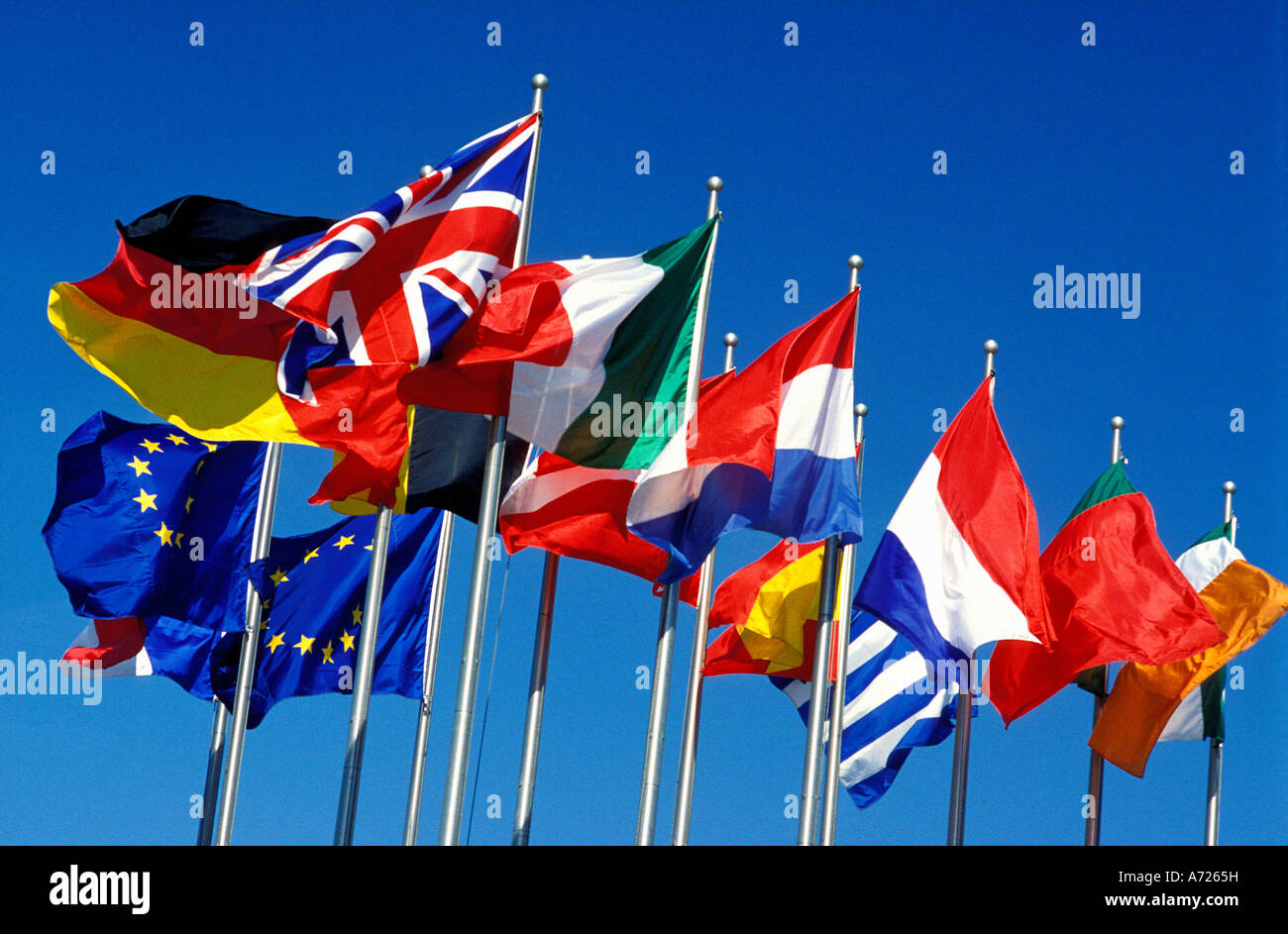 European Community flags Stock Photo