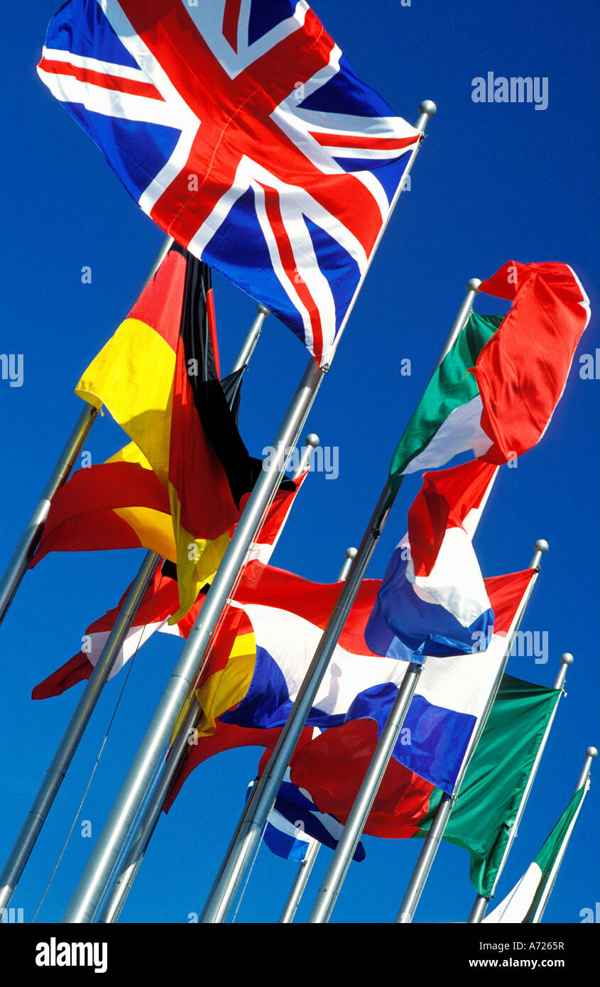 European Community flags - Stock Image