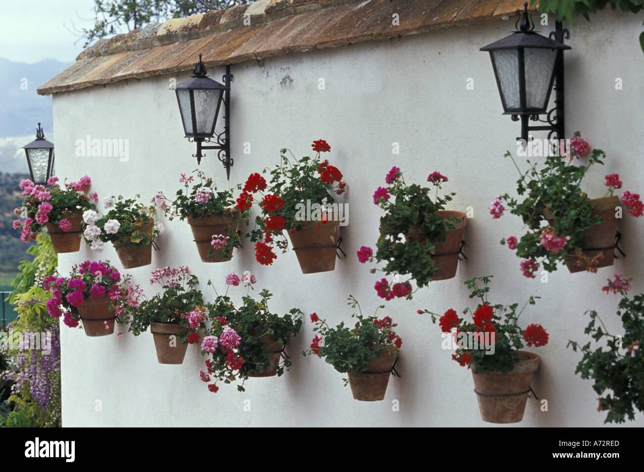 Alamy & Spain Andalucia Ronda Flower pots of geraniums line white ...