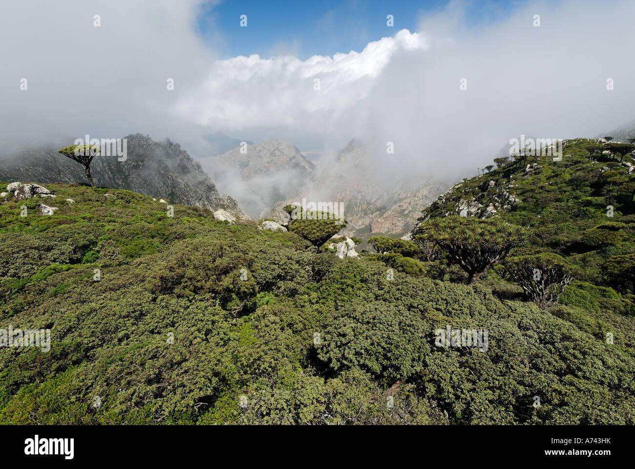 monsoon clouds over the Hagghier Haggier Mountains Socotra island Yemen Stock Photo