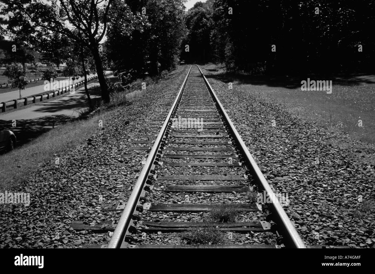 Train Tracks leading into distance - Stock Image