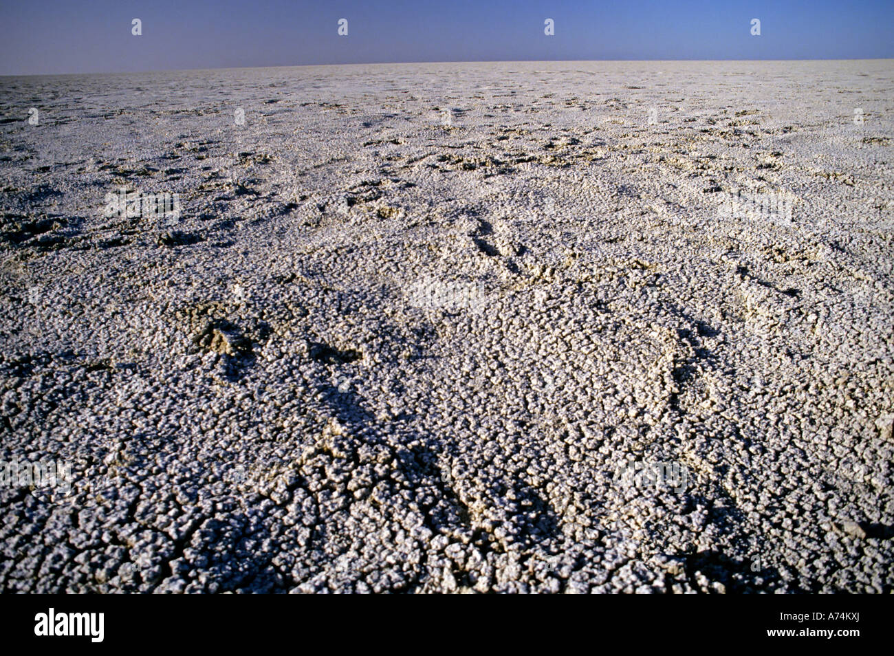 The dried up wasteland of the Etosha pan Namibia Africa - Stock Image