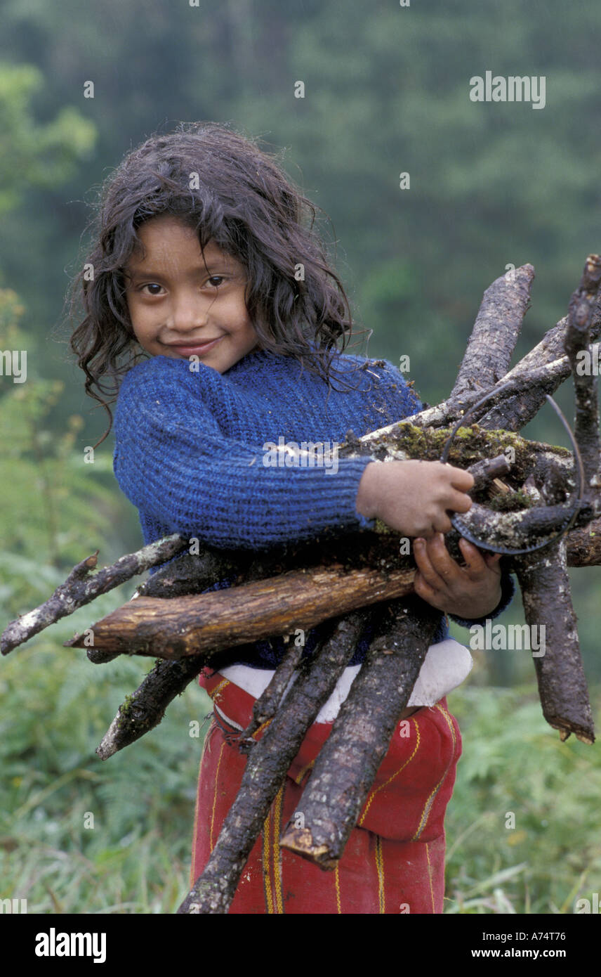 Central America, Guatemala, Ixil Triangle An Ixil tribal girl gathering firewood for family - Stock Image