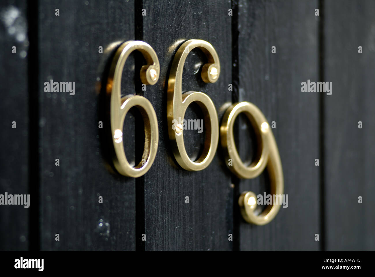 Brass door number 669 on a wooden door