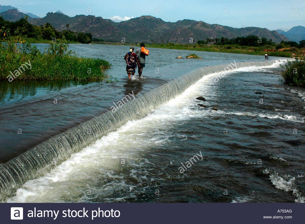 save thamirabarani river