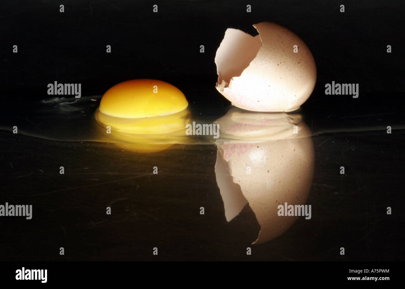 BROKEN  CHICKEN EGG AND SHELL WITH YOLK UK - Stock Image