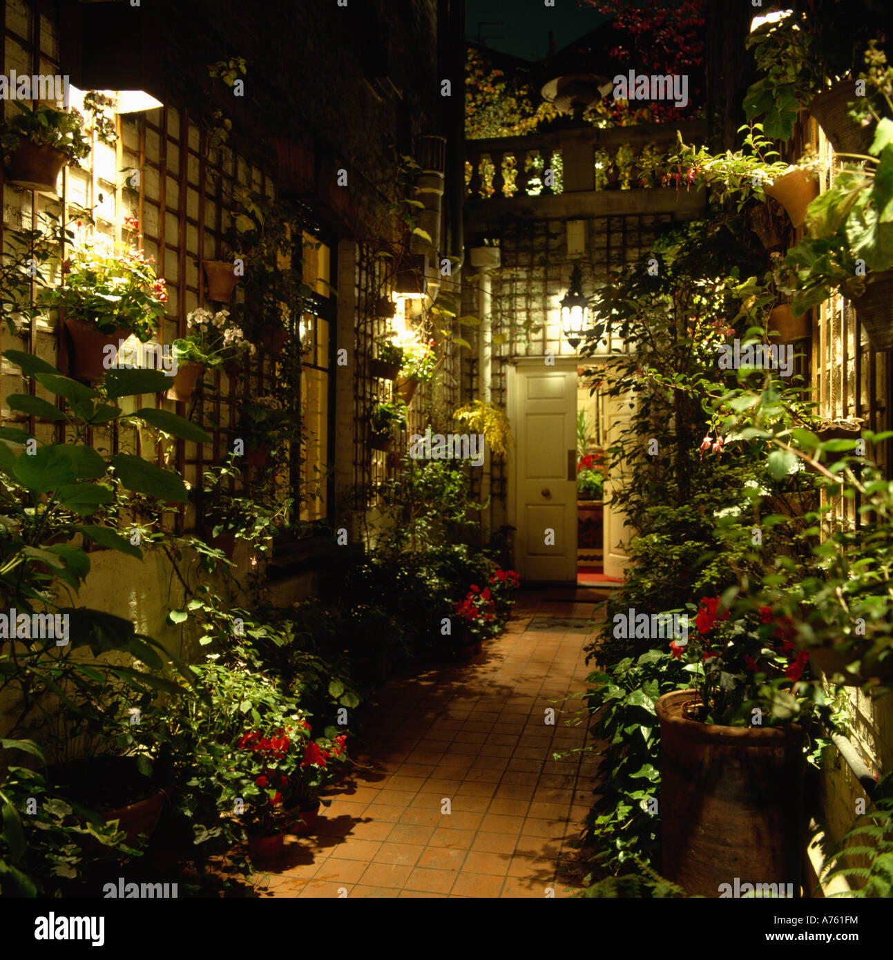 trellis lighting. Trellis On Wall With Lush Climbing Plants Beside Path To Front Door Of Basement Apartment Lighting N