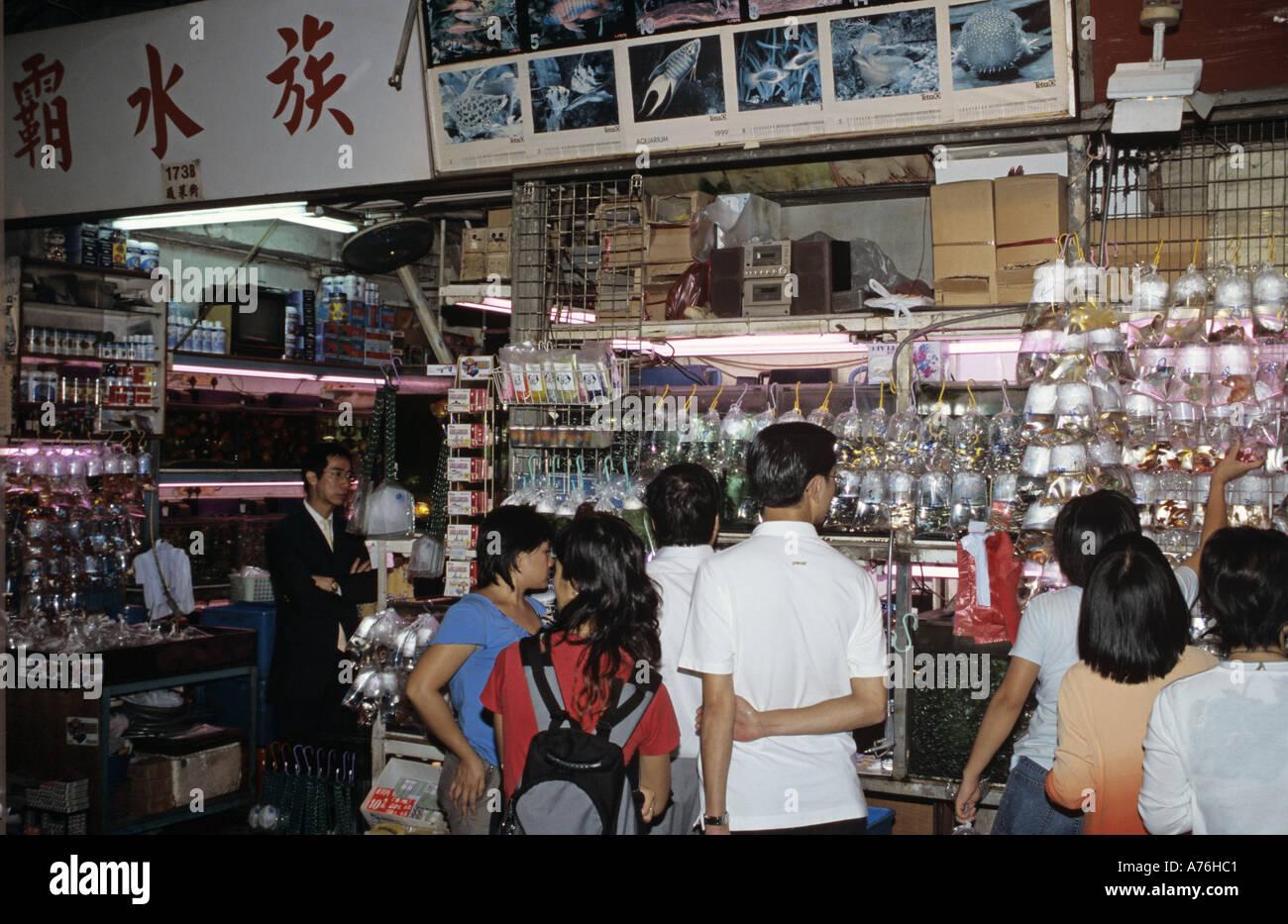 Asien Asia China Hongkong Hong Kong Kowloon Stock Photo