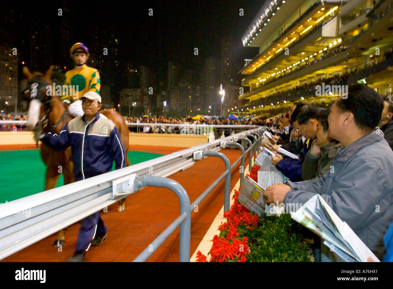 Racehorse and jockey walking around the paddock at the start of the race with the punters looking on. - Stock Image