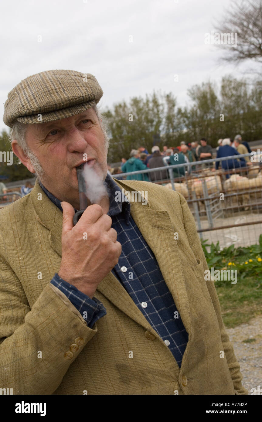 978dce570d0b old farmer in flat cap smoking pipe Crymych sheep market Pembrokeshire  wales UK