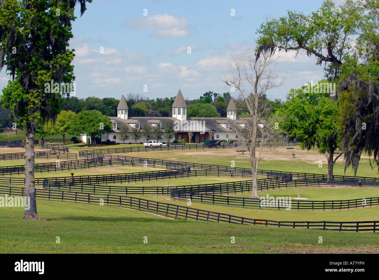 Horse Farms In Ocala Florida Fl Stock Photo 11753572 Alamy