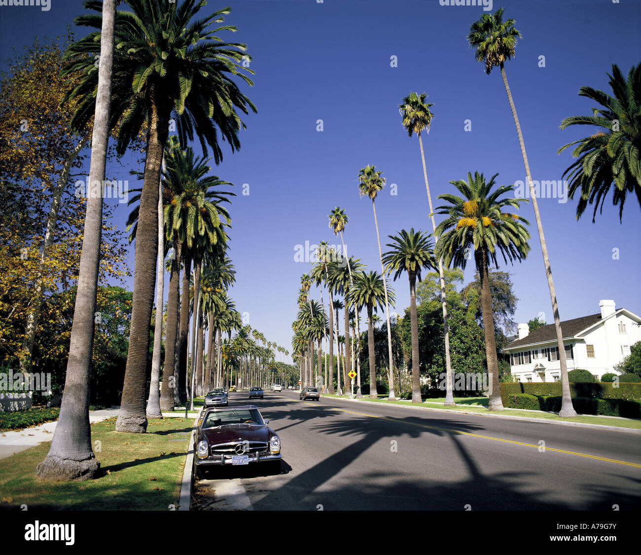 Luxury House In Los Angeles California: Hollywood Hills And Houses Stock Photos & Hollywood Hills