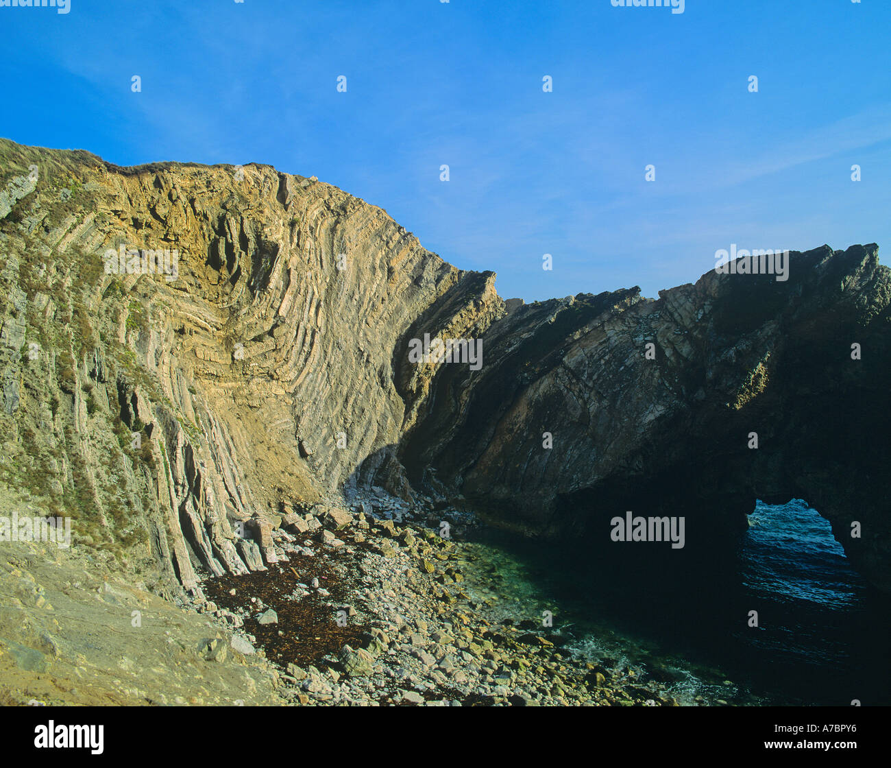 Lulworth Crumple Twisted strata of rock layers caused by pressure and movement on the cliffs by Lulworth Cove Dorset ENGLAND - Stock Image