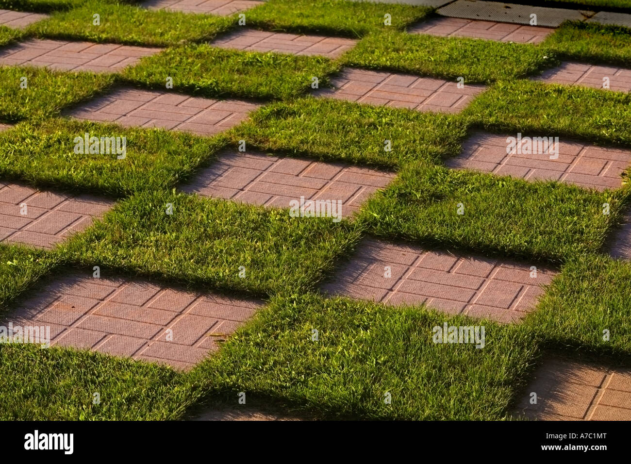 A Checkerboard In A Garden Made Up Of Patio Stones And Grass.