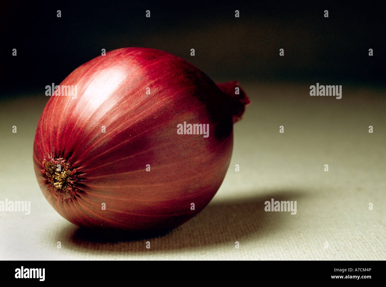 Red Onion. - Stock Image