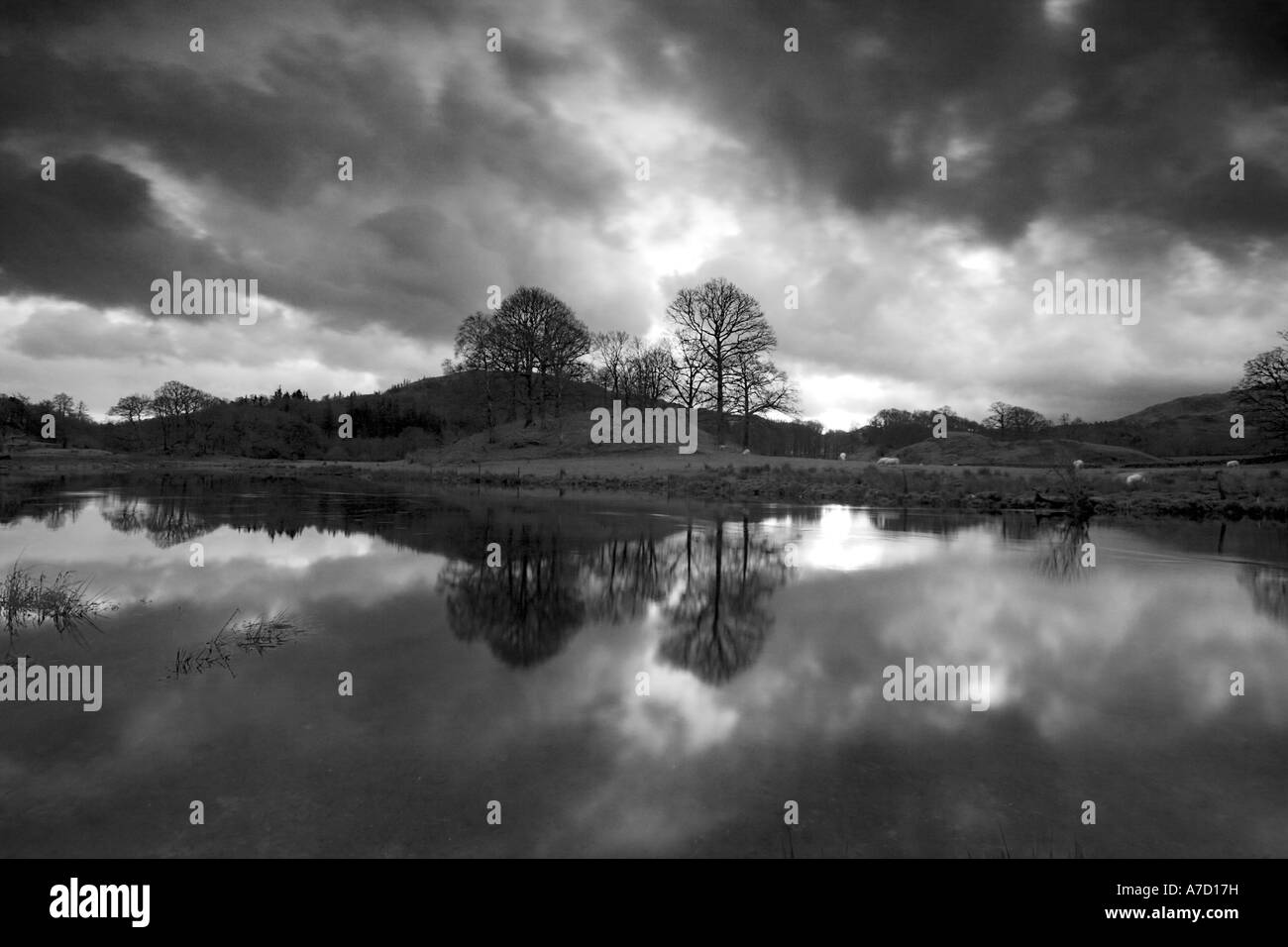 Elterwater in the evening The Lake District - Stock Image