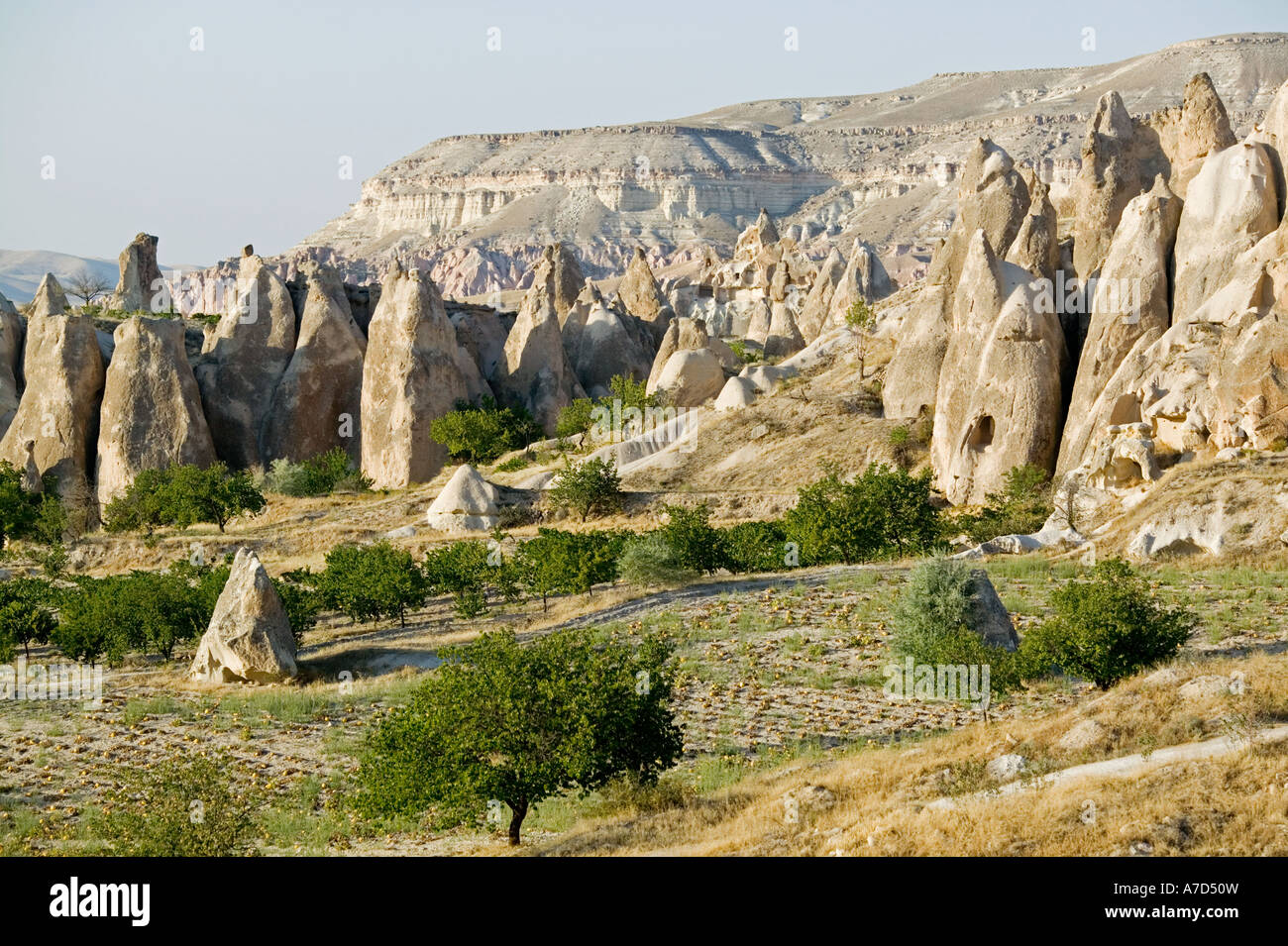 Curious columnar rock formations with cave houses in Cappadocia nar Goreme - Stock Image