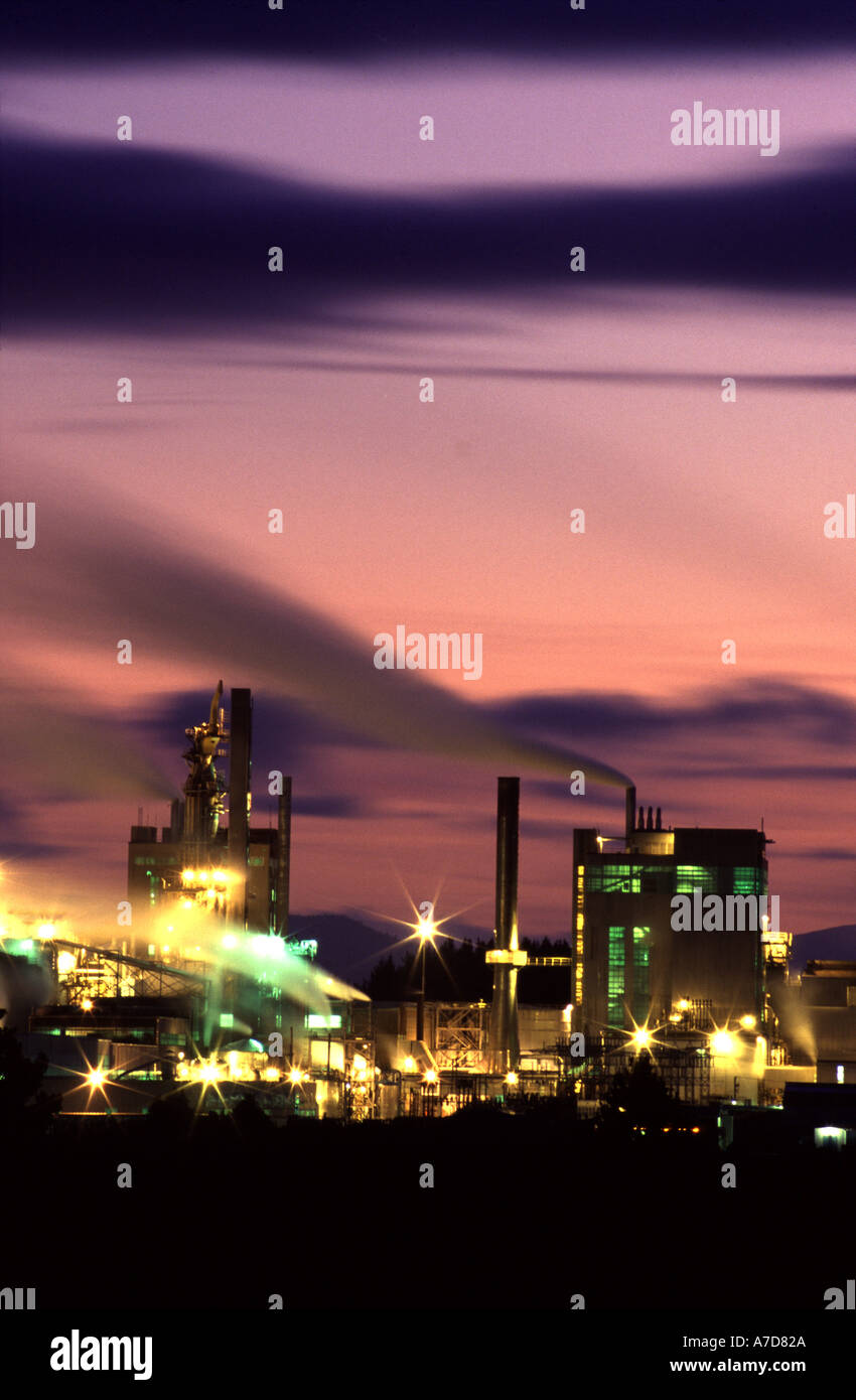 Kinleith Pulp and Paper Mill Tokoroa New Zealand - Stock Image