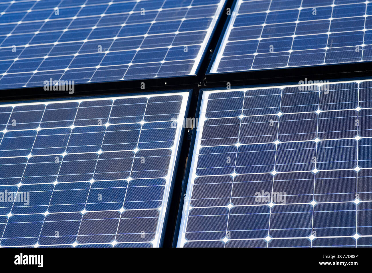 Array of solar panels producing electricity. Rows of monocrystalline photovoltaic solar cells. - Stock Image