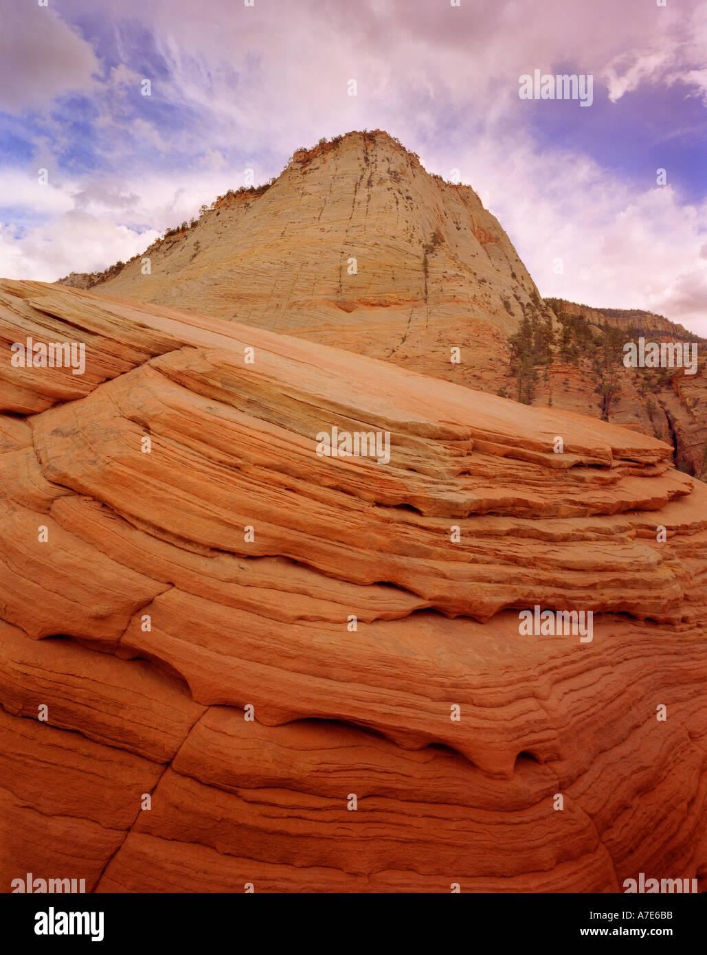 Chequerboard Mesa Zion National Park Utah USA - Stock Image