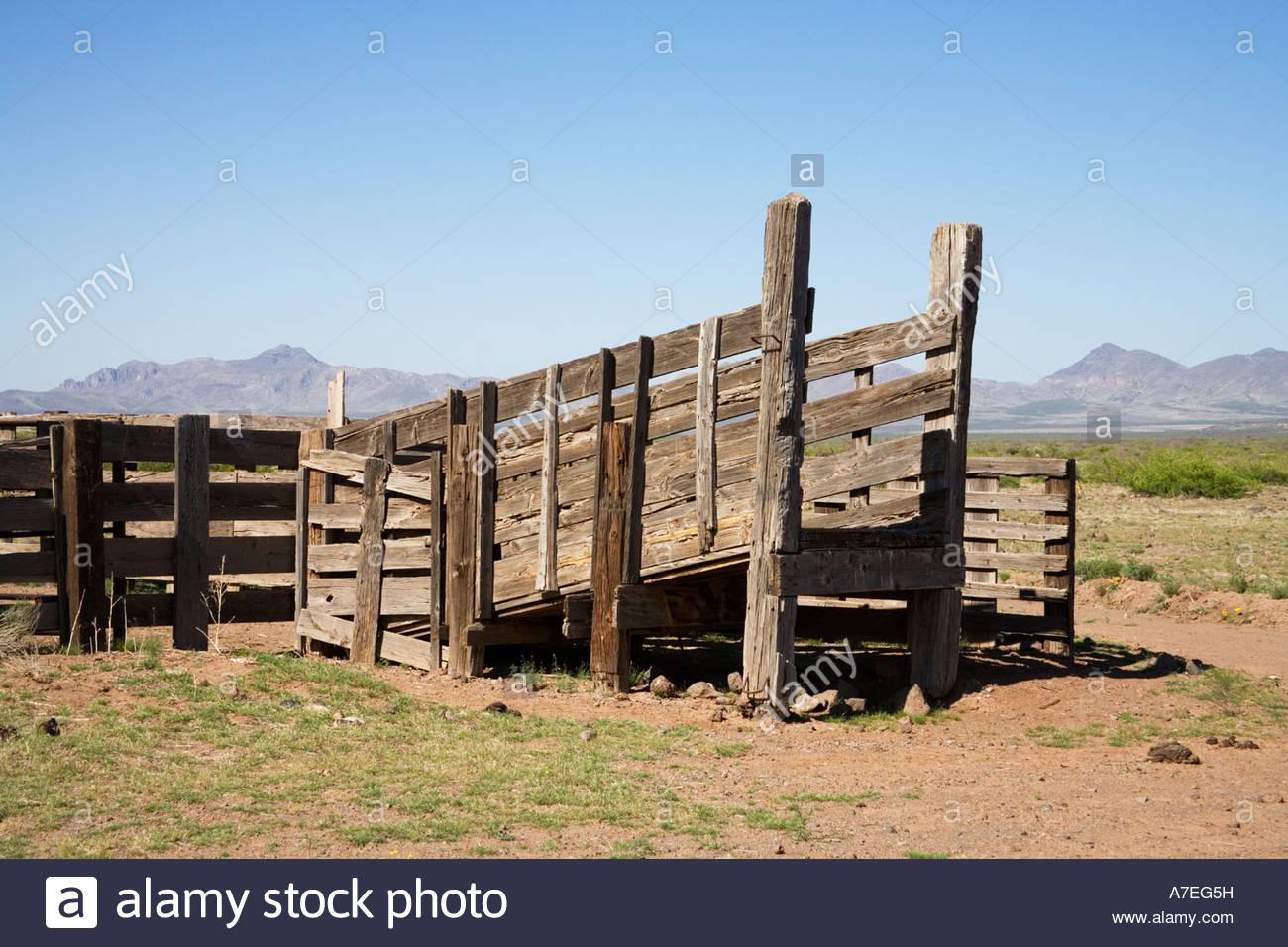 Livestock Loading Chute And Corral Stock Photos Livestock Loading