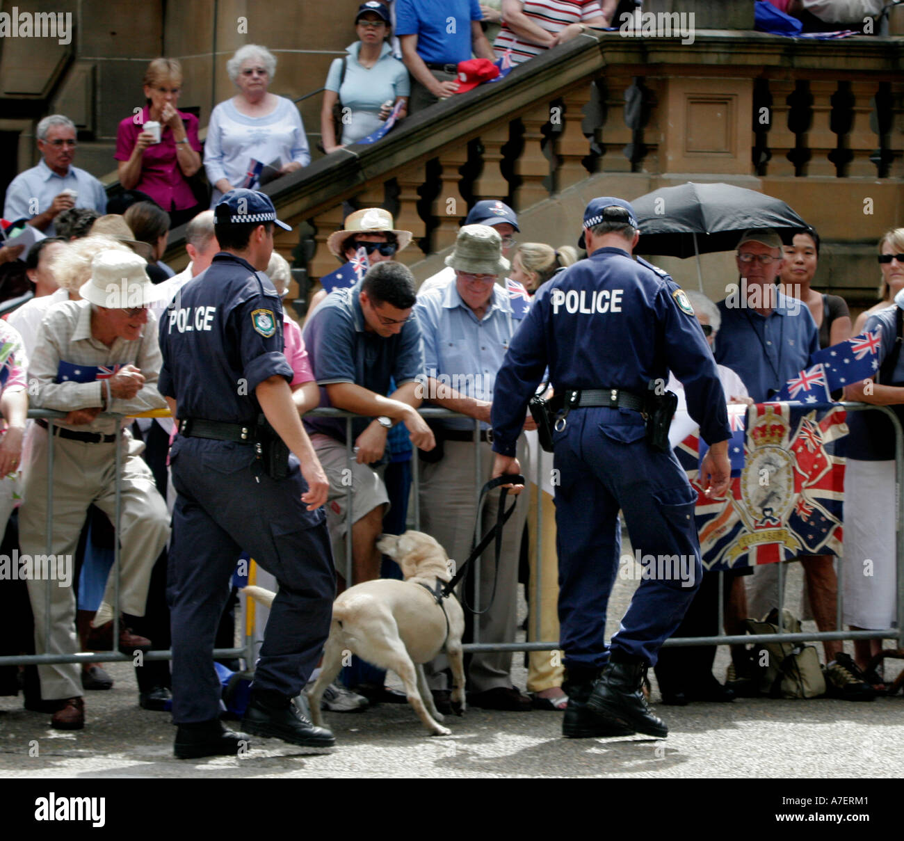 Police dogs in explosives check - Stock Image
